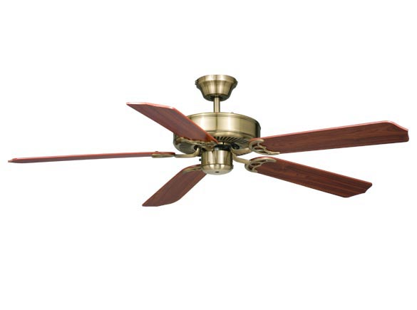 AireRyder Medallion Fan