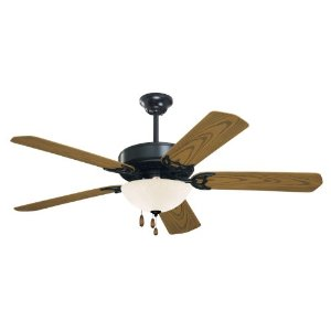 Outdoor Barbeque Black Ceiling Fan
